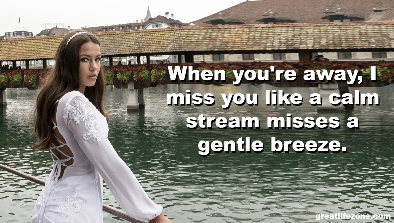 Missing You Quotes - GREAT LIFE ZONE