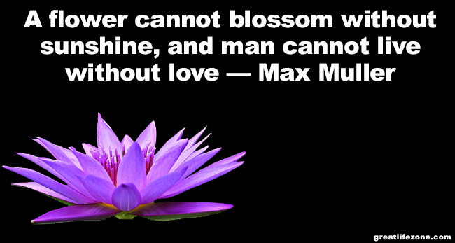 Love Quotes - A flower cannot blossom without sunshine, and man cannot live without love — Max Muller